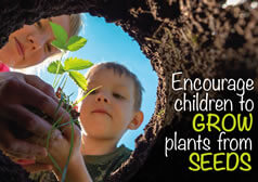 Encouraging children to grow plants from seeds